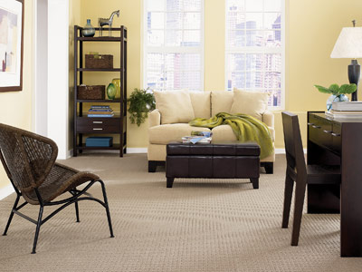mohawk carpet 1